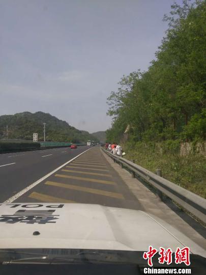 一行七报酬医治鼻炎竟走上快速公路采花。 叶涛 摄