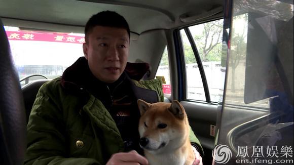 孙红雷与柴犬图片