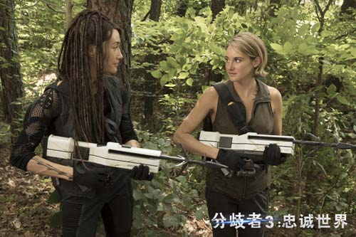谢琳、Maggie Q并肩作战