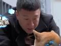《搜狐视频综艺饭片花》黄渤孙红雷撞脸汪星人互损 红兴CP高能再发糖