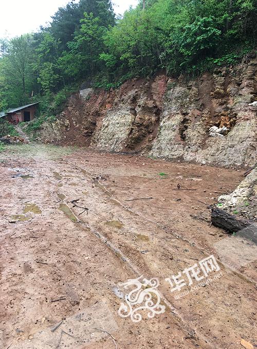 罗文廷挖出牙齿形状石头的地方。 通讯员 刘朝明 摄