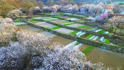 媒体新闻滚动_搜狐资讯    当收到《春天来了》月赛入围作品时,正是二图片