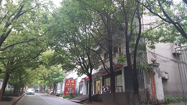这条街上的房子,因历史遗留原因,都未办理相关证件。 澎湃新闻记者 周琦 图