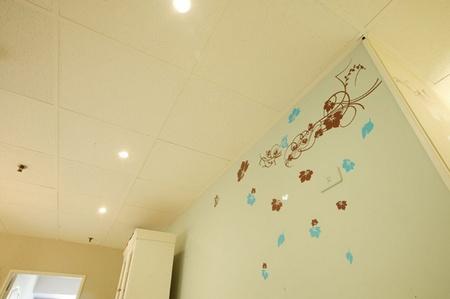 家居装修效果图:墙角的墙贴-家居装修效果图 小户型收纳看这里