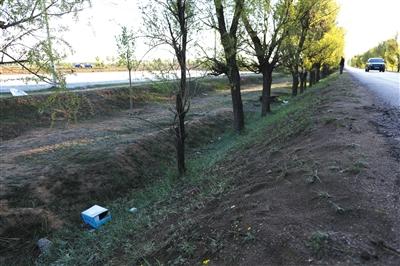 山西朔州市毛皂村,一名绑匪被击毙在这棵小树旁。