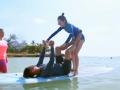 《我们相爱吧第二季片花》第九期 宇宙CP上演水上瑜伽 周冬雨甜蜜背拥余文乐
