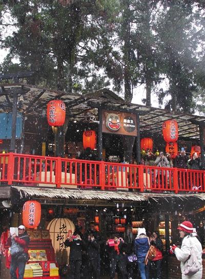 2016年1月24日,台湾南投,溪头魔鬼村飘雪,旅客高兴照相。图/CFP