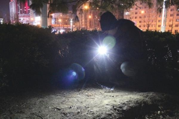 1月24日,老曹在小树林里提取沾有嫌犯尿液的土壤。 本文图像均为 京华时报 材料图