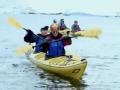 《花样姐姐第二季片花》第十二期 花样团挑战皮划艇偶遇壮观 上百只海豹路过