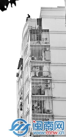小赖坐在15楼顶