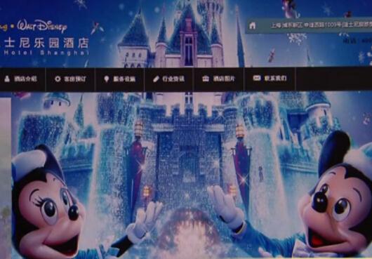 搜百度查到山寨迪士尼酒店网站,客服要求提供信用卡关键信息