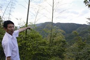 乡民吴学田通知记者,劈面两座山那是潘建友承包的局部山场 见习记者 邱一文 摄
