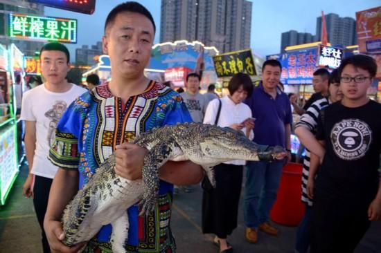 商贩捉来活鳄鱼。
