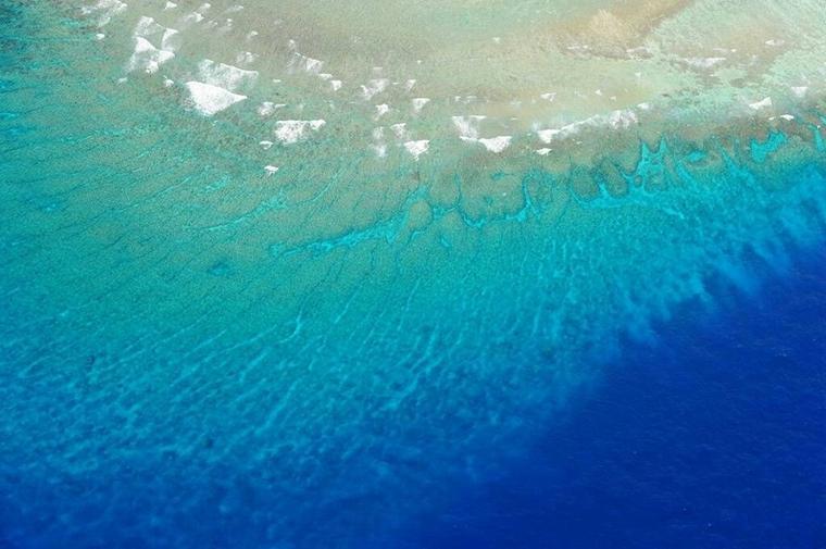 南沙群岛是我国分布面积最广,岛礁数量最多的群岛,也是个迷人的世界.