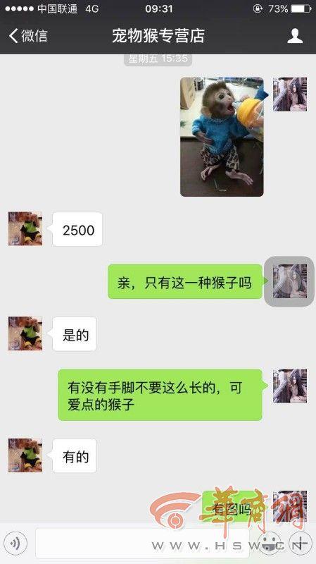"""女孩购萌宠""""石猴"""" 微信转账2500元后被拉黑图片"""