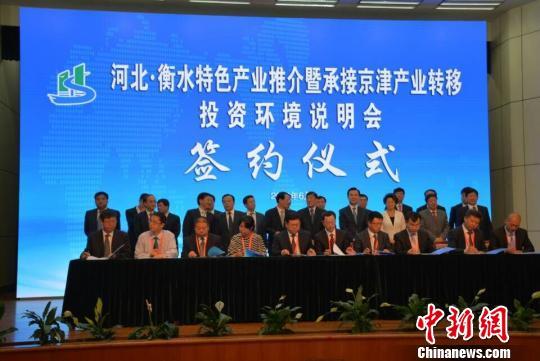 衡水市委书记李谦在介绍情况。 王鹏 摄