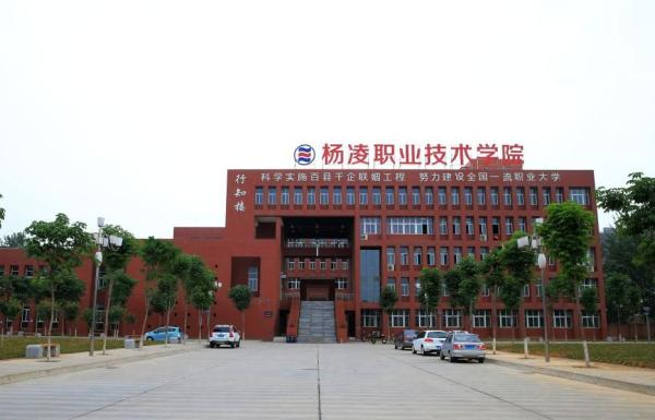 """去年4月份,富平县政府与杨凌职业技术学院开展校县合作,共同成立了""""富平职业农民培育学校""""。"""