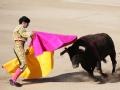 人在酒途 斗牛舞步