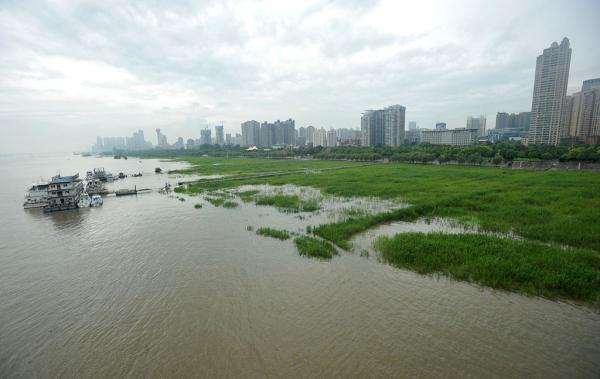 2016年6月28日,武汉,受下游来水增加和延续降水等要素作用,长江武汉段水位一直下跌,汉口江滩大面积滩涂已被江水漫过。 视觉国家 图
