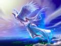 歌声与翅膀