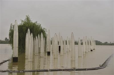 今天,仅能看到5根水位柱显露珠面。 刘浏 摄