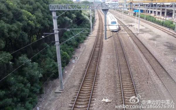 7月6日14点10分左右,一名男子从上海莘庄地铁南广场的人行立交桥跳下,被驶过的和谐号列车撞到立交桥另一侧路基。