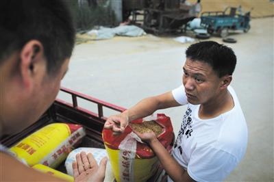 前来卖粮的农民大部分不理解,粮食为什么卖不出去。徐振营拿着袋子里的麦子解释国家收购粮食的标准。