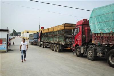 徐振营拉去卖的8车小麦都被拒收,理由是不完善粒超标。7月2日,他拉着第9车粮食准备接受检验。