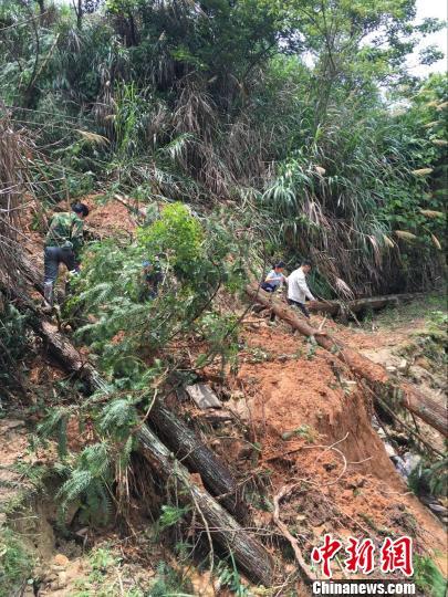 图为永泰红星乡多处山体滑坡,为寻亲路带来困难。 林春茵 摄