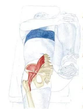 跳水冠军吴敏霞推荐!缓解腰背部疼痛拉伸图解