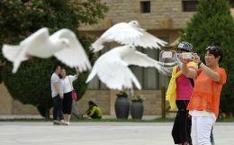 """宁夏是丝绸之路的重要节点,自然生态和历史人文资源得天独厚,被誉为""""中国旅游的微缩盆景""""。从2015年开始,宁夏从传统的""""景区旅游""""向""""全域旅游""""转变,力求依托全域布局将宁夏打造成为丝路上的国际旅游目的地。在全域旅游配套方面,通过发展新型旅游小城镇、旅游商业街区、农家乐、自驾车营地等方式吸纳游客,以场景式旅游项目调动游客与旅游项目的互动,形成全域旅游发展新形态。"""