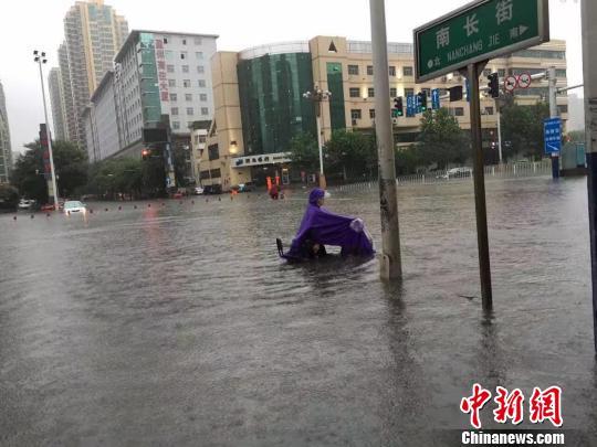 图为雨中坚守岗位的石家庄交警。 网友供图 摄