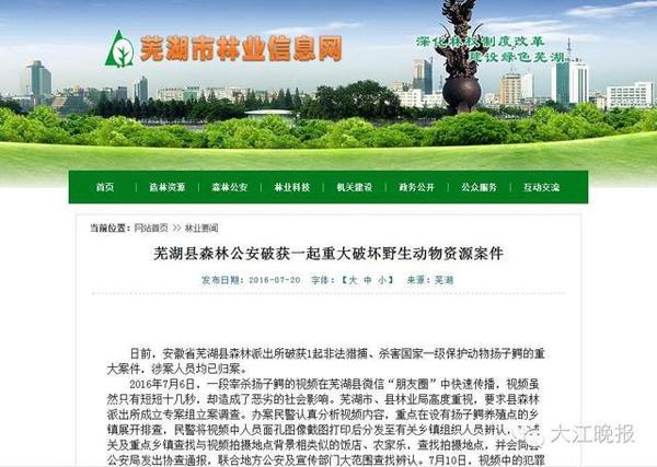 2016年7月6日,一段宰杀扬子鳄的视频在芜湖县微信伴侣圈中倏地流传,视频固然只要短短十几秒,却形成了顽劣的社会作用。