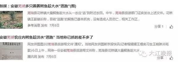 很多芜湖网友还看到了旅行局文件的图像说的那是这个事儿