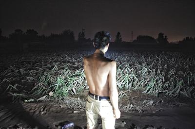 7月23日,邢台大贤村,乡民检察被大水冲垮的农田。 新京报记者 王嘉宁 摄