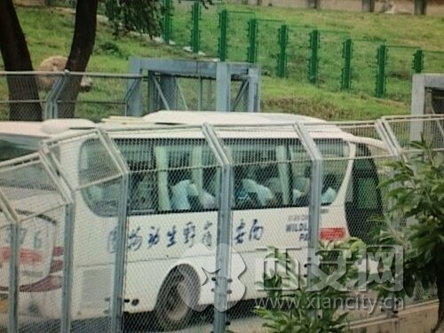 西安秦岭野生动物园:300多块安全标牌 提醒游客当心(组图)