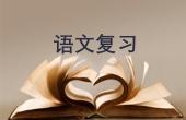 高考语文总复习:字音