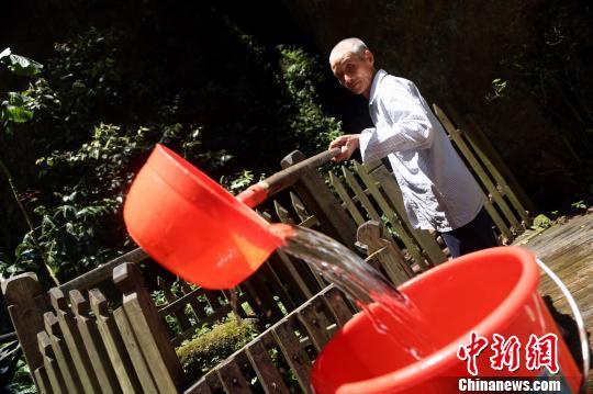 30日,和往日一样,一头白发的周文荣为游客冲泡茶水。 姜涛 摄