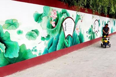 近日,一条百米墙绘荷花出现在文汇路上,生动的图案及廉政文化,如阵阵清廉之风扑面而来。 沈扬生 薛凤云 摄