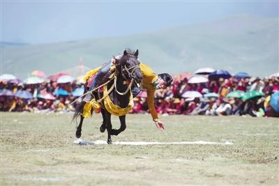 7月31日,在四川省石渠县扎溪卡大草原上,一名藏族骑手进行技巧表演。