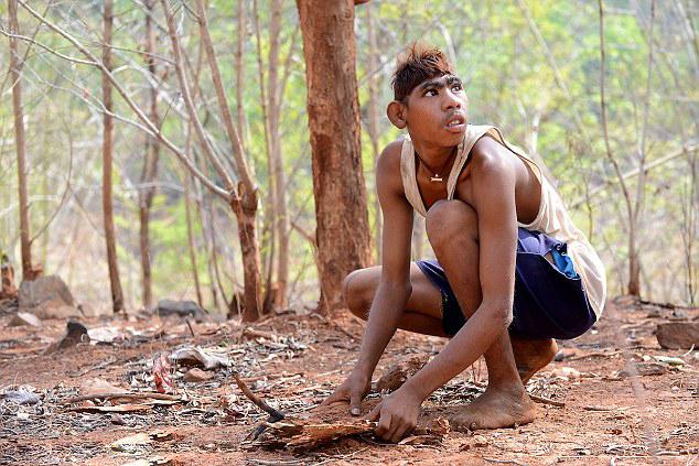 据英国《每日邮报》7月30日报道,印度一对姐弟时常进入丛林,与野生动物一起玩耍,却从未受伤。弟弟戈卢(Golu)的行为举止甚至像猴子,他因为走路的姿势怪异被别人戏称大猩猩。