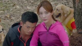 《神犬小七第二季》第41集剧情