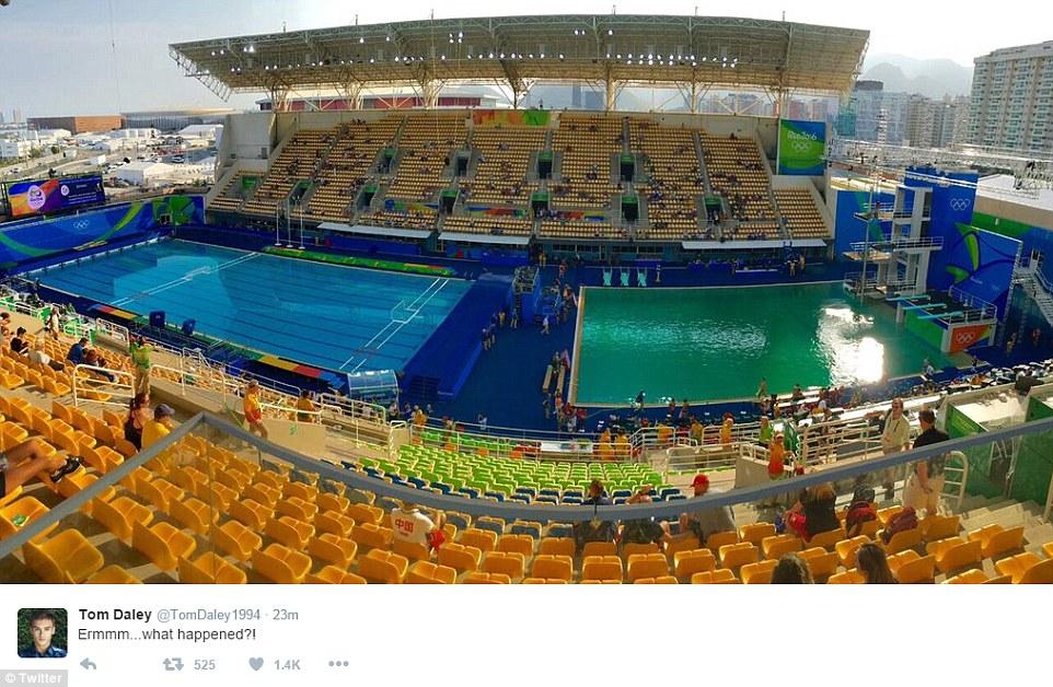 站在跳板上能更�@著的�l�X池水色彩的相同,如今的池水是一�N�}�p的�G色。