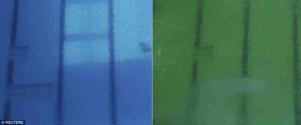 里约奥运:女子跳水池比赛中变绿 巴西官员说原因不明