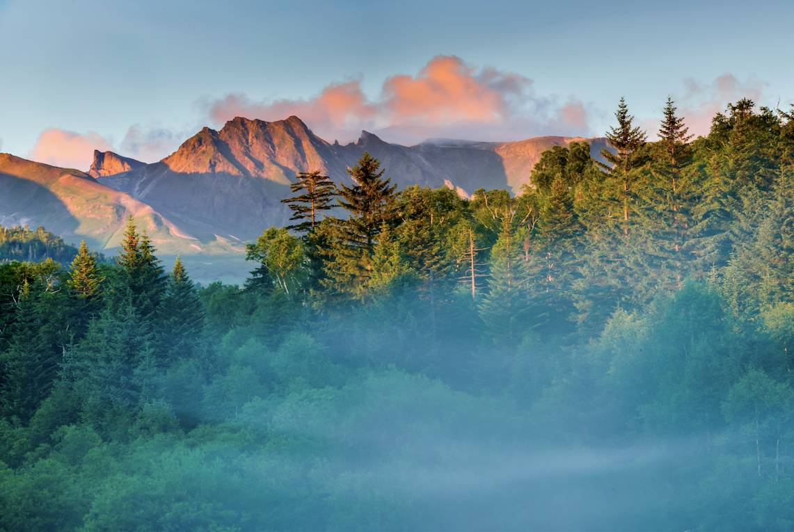9月25日森林马拉松长白山站 脚步探秘原始森林图片