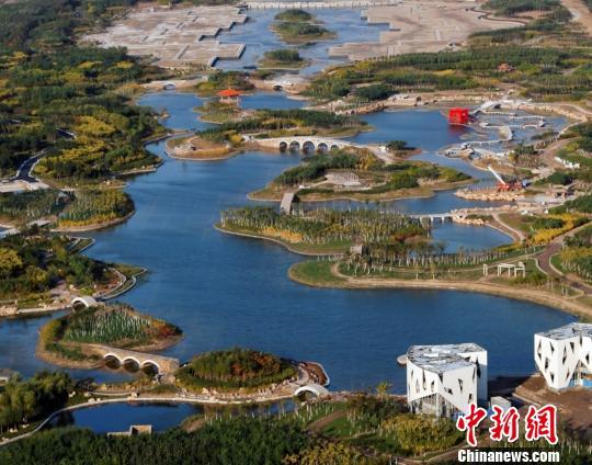 图为天津临港经济区生态湿地公园一景色。 资料图 摄