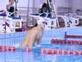 专家:惋惜孙杨1500米自由泳 霍顿事件令人愤怒
