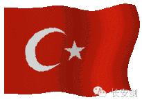 轮到土耳其开会时,正值巴黎连环恐怖袭击发生。各国安保级别都是水涨船高,起步价低了,都不好意思和别人打招呼。辣么多双��逵猩竦乃�眼,都盯着土耳其呢。