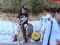 《花样男团片花》第十一期 郭老骑驴下山化身唐僧 陆毅贾乃亮步行遇驴群