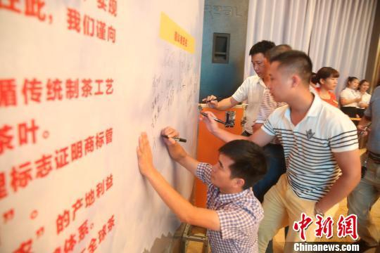 """9月2日,""""感恩铁观音、合作谋新篇""""华源茶业合作基金在""""中国乌龙茶(名茶)之乡""""福建安溪正式启动。 陈小阳 摄"""